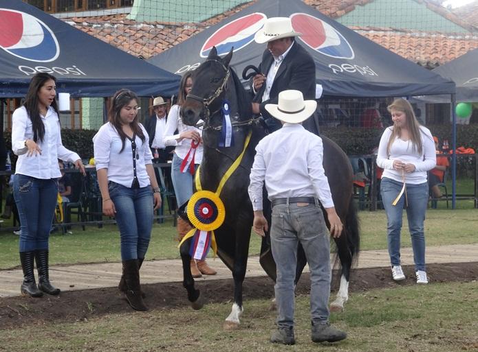 II Festival por el Bienestar Equino