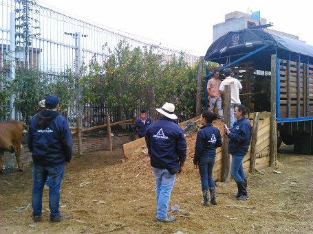 En la foto: Estudiantes del Programa de Zootecnia de Uniagraria en el desembarcadero de Corferias en contacto directo con los ejemplares.