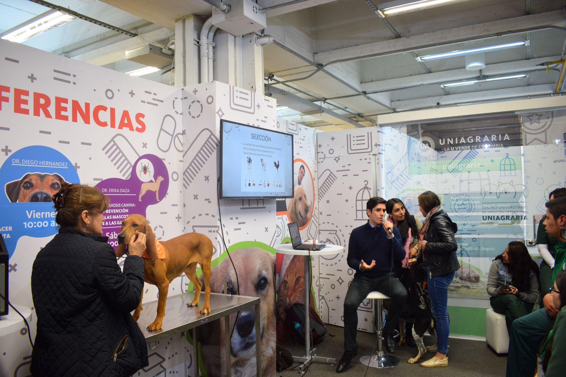 Características fenotípicas de la raza canina autóctona Fino  Colombiano