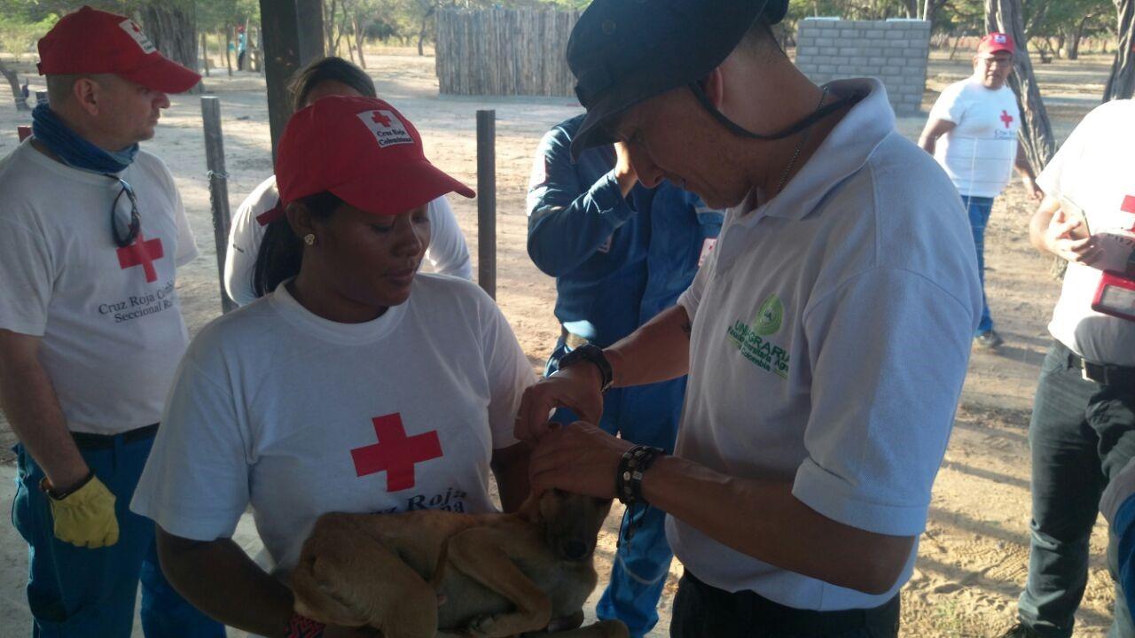 Uniagraria apoyando a La Guajira