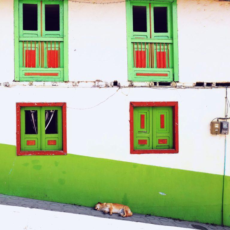 Derecho inmobiliario y propiedad horizontal