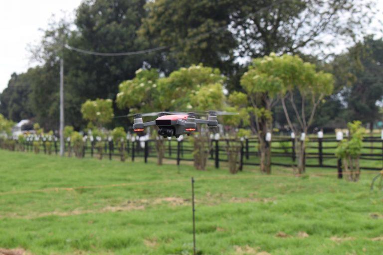 Drones para analizar la salud alimentaria del ganado