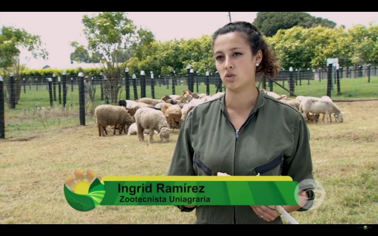 Calostro artificial y análisis de semen. #UAenmedios