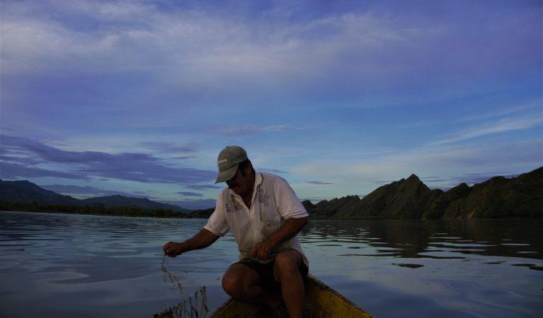Restauración Ecológica como estrategia de Adaptación ante el Cambio climático
