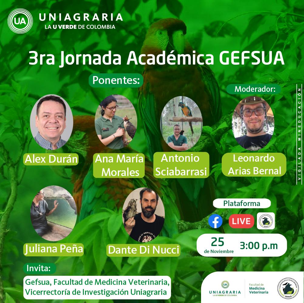 3ra Jornada Académica GEFSUA