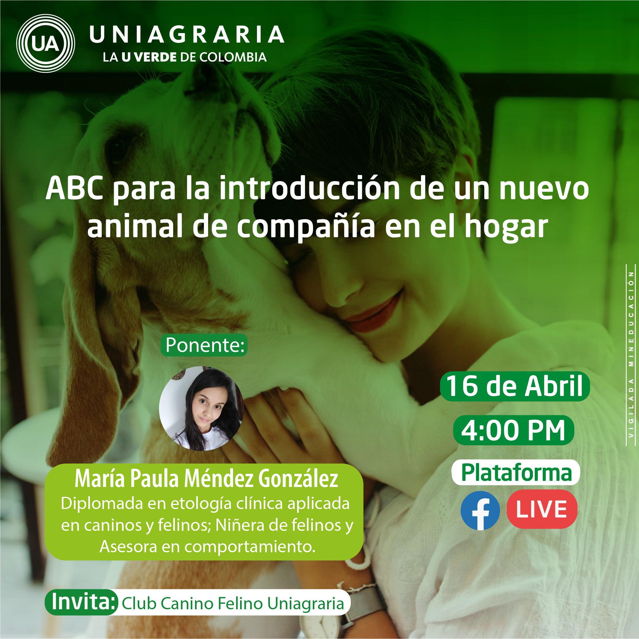 ABC para la introducción de un nuevo animal de compañía en el hogar