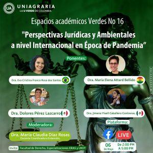 Perspectivas Jurídicas y Ambientales a nivel Internacional en Época de Pandemia