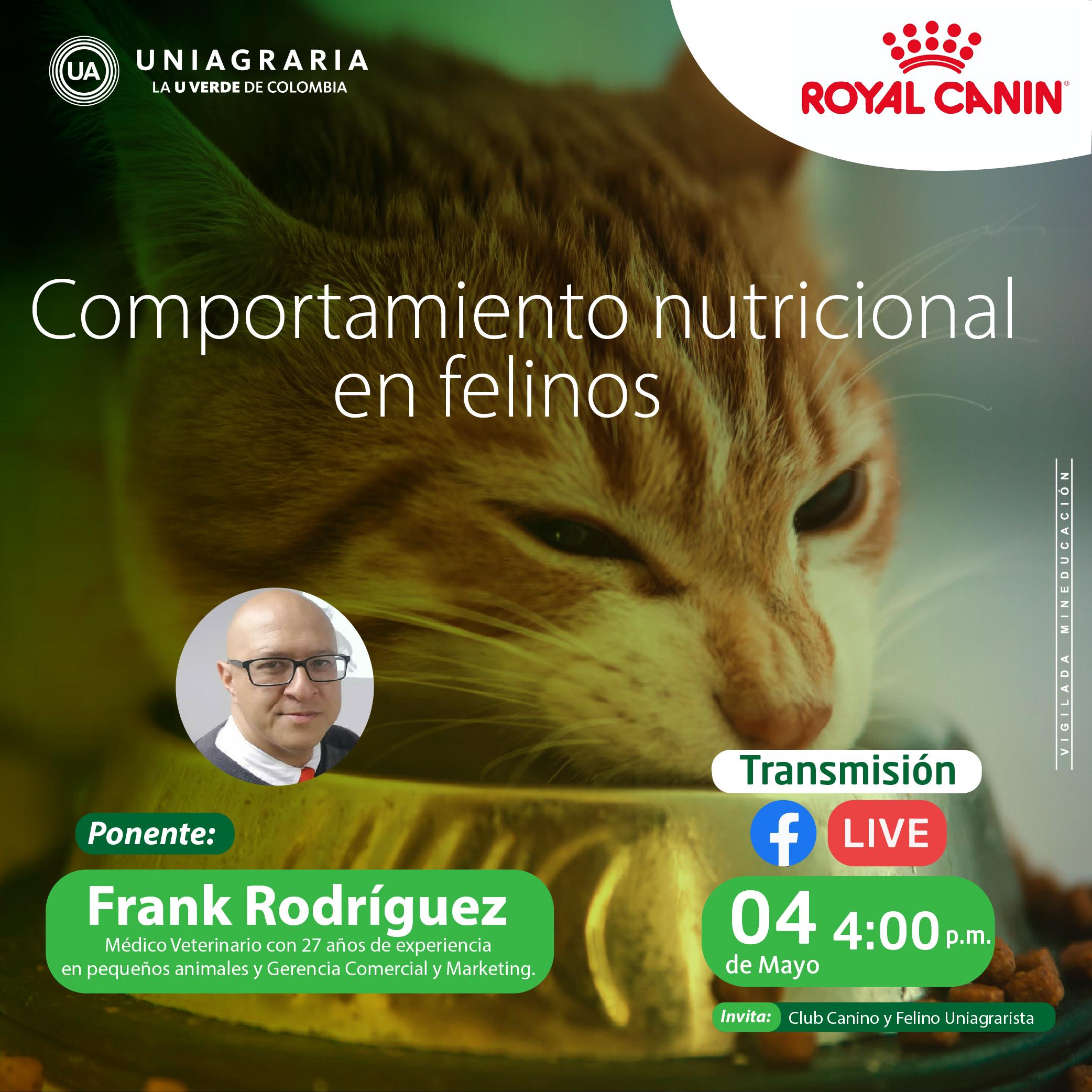 Comportamiento nutricional en felinos