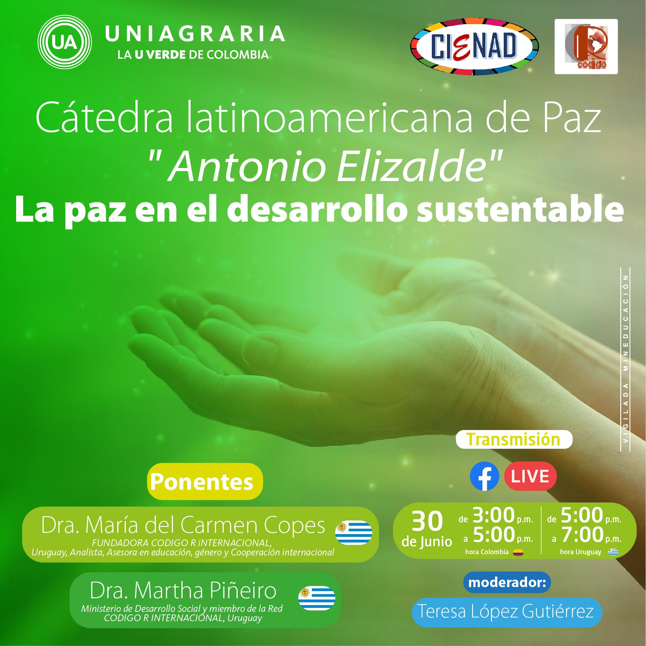 Cátedra latinoamericana de Paz: La paz en el desarrollo sustentable