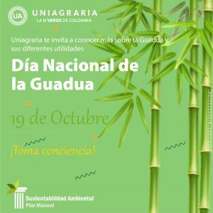 Día Nacional de la Guadua