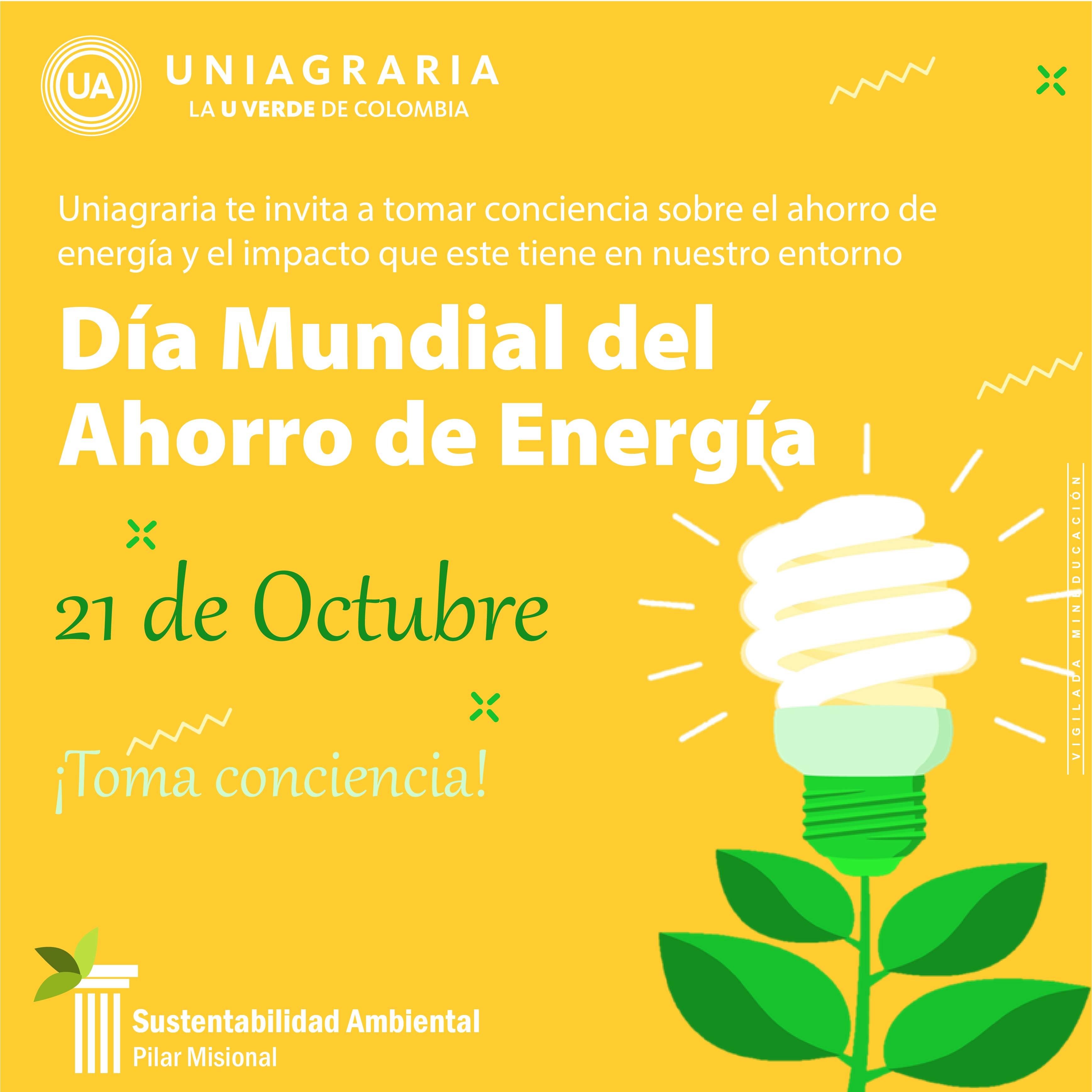 Día Mundial da la Ecología