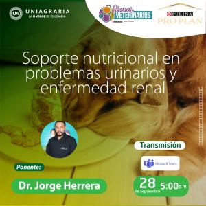 Soporte nutricional en problemas urinarios y enfermedad renal